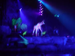 Fantasmic show at Disney Studios at Disney World
