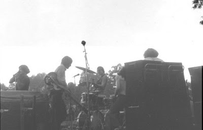 mandrake_memorial,psychedelic-rocknroll,1968,poppy,medium,puzzle,harpsicord,live