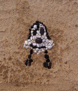 Beach Doof