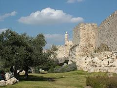 Jardins de Davi em Jerusalém, Israel