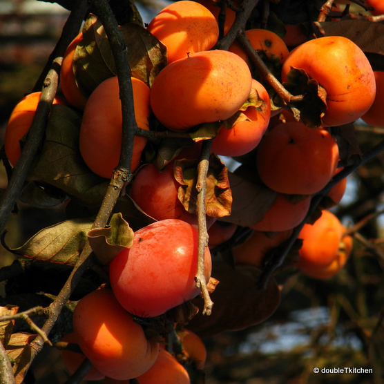 persimmon - kaki ili japanska jabuka