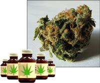 Marijuana legalized in Holland, The Netherlands, sold by Maripharm. Prescribed as an appetite enhancer and painkiller for people with AIDS, multiple sclerosis and Tourette's syndrome.