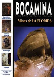 MINAS DE LA FLORIDA