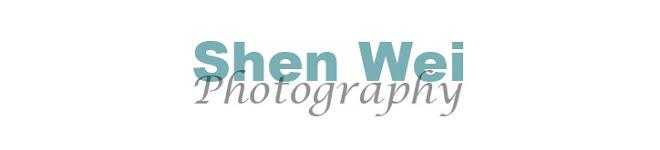 Shenphoto Blog & News