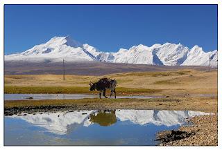 Mt Kangbochen