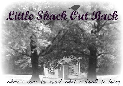 Little Shack Out Back
