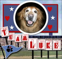 We Are Team the Luke