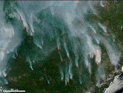 NASAs Aqua-satellit fotograferar bränder