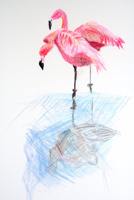 Colored pencil flamingo painting by D. Neagley