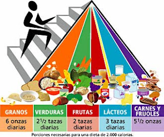 Que forman parte una balanceada de alimentos dieta