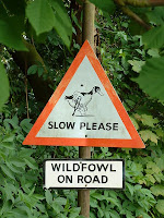 Slow Duck sign