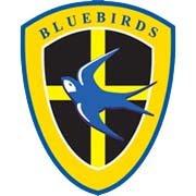 Cardiff crest