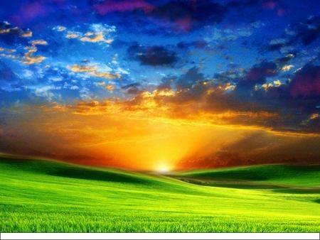 nature colors beauty