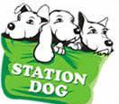 Station Dog - Ana Maria Braga