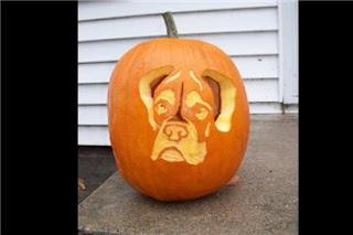 Dog Talk 101 Dog Pumpkin Carvings