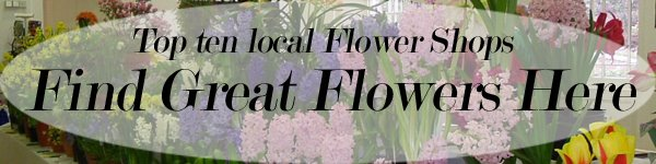mn floral shops Here