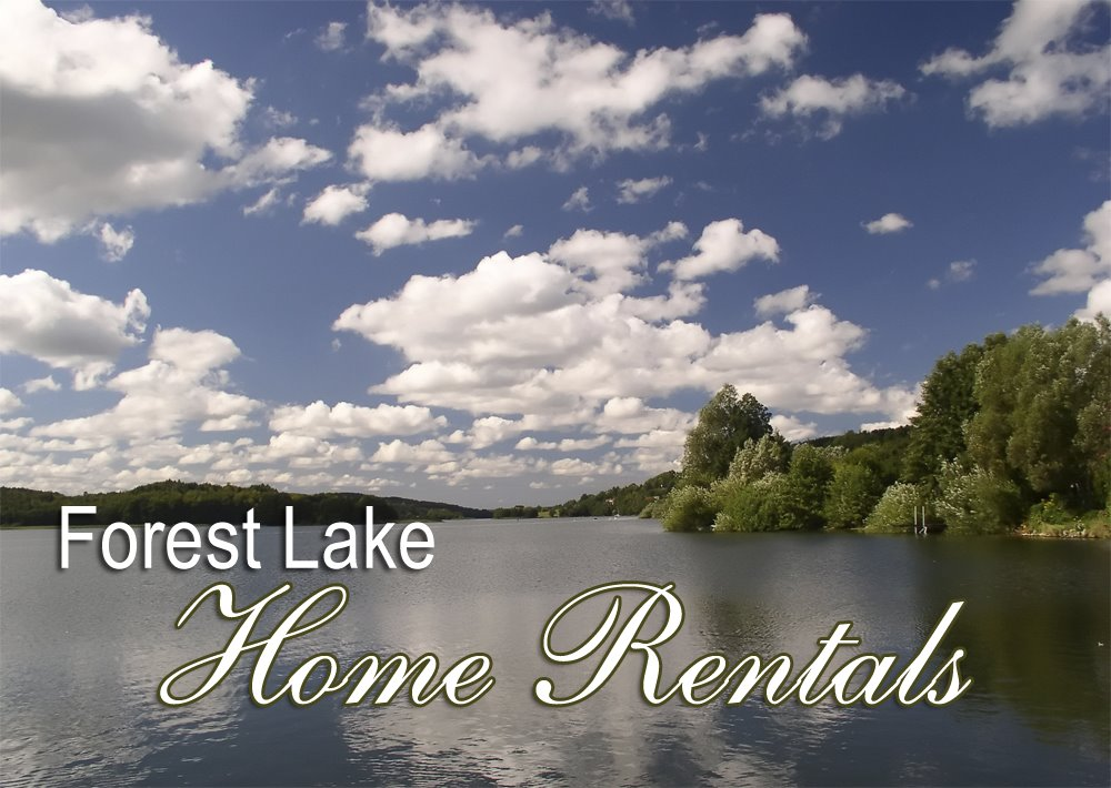 [forest+lake+mn+rental+home+search]
