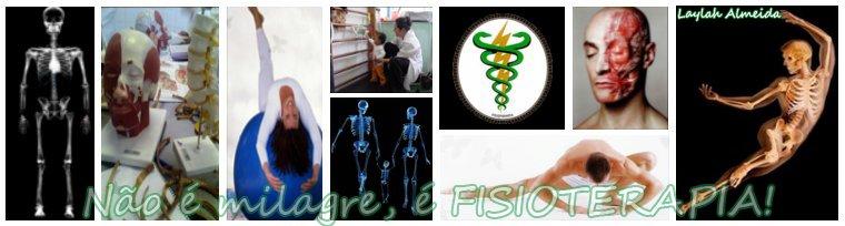 ~* Fisioterapia 2008/1 *~