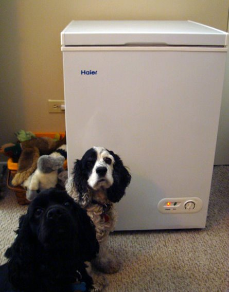 [freezer+posing+with]