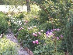 Trädgården på Thyrasgård