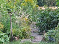 Thyras Trädgård