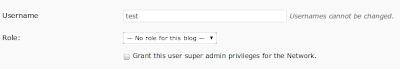 User Role MultiSite WordPress 3.0