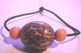 [E+Paxiubinha+e+laranja.JPG]