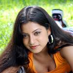 Keerthi Chawla Sexy Stills