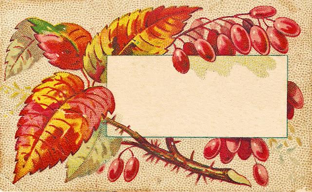 http://1.bp.blogspot.com/_N8RZCJrRAx4/TH0Y5A_SmOI/AAAAAAAADjA/TTgOk6-a6_Y/s0/AutumnC2.jpg