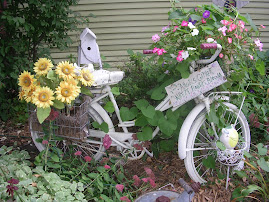 Bicycles in the yard!