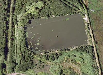 Carp coarse and swansea fishing in and around swansea for Square fish pond