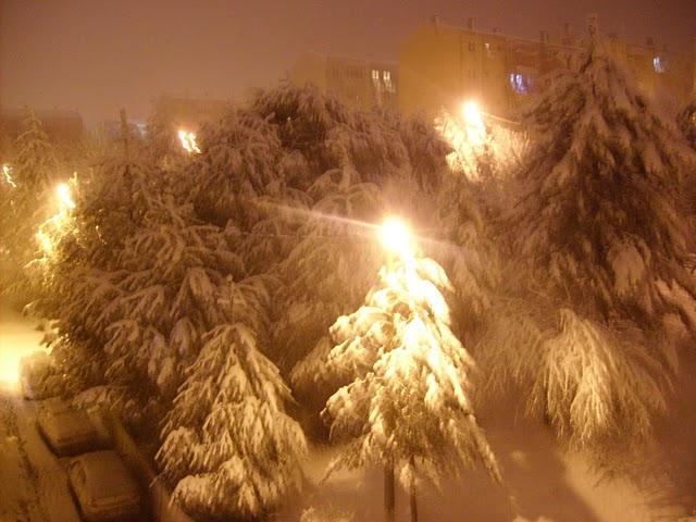 bursa kar