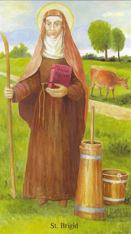 Image result for saint brigid of ireland and cows