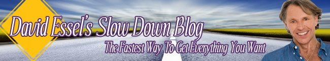 David Essel's Slow Down Blog