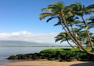 Maui Beach Hawaii