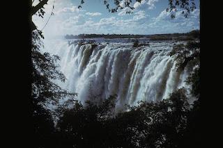 Safari of kenya