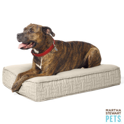 Petsmart Exclusive Martha Stewart Pet Products To The