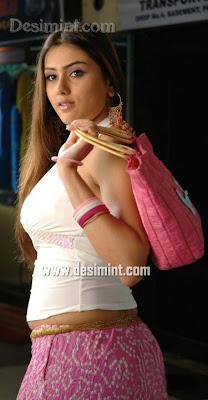 Hot Desi Actress Namitha Masala Pics Gallery