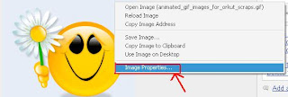 Upload Animated GIF and JPG images onto Orkut Album Using Your Picasa Account