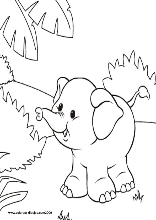 Magnífico Lindo Bebé Zoológico Animales Para Colorear Molde ...