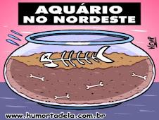 PENSE NISTO NA HORA DE DESPERDIÇAR ÁGUA