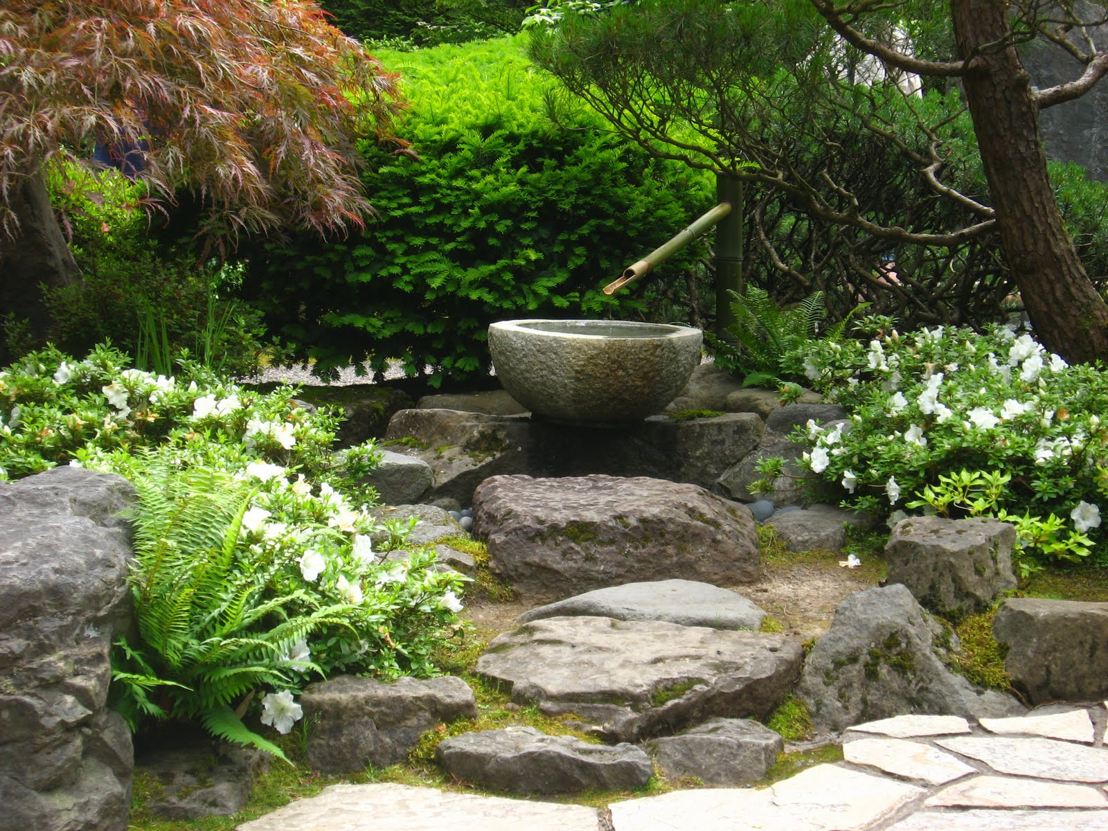 Running with rocket japanese garden inspiration for Garden design features