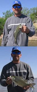 Lake Tom Steed Oklahoma Fishing Report by Mike Diehl
