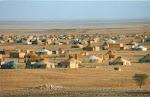 Alimenta la resistencia del Pueblo Saharaui