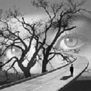 [olhos+nos+olhos.jpg]