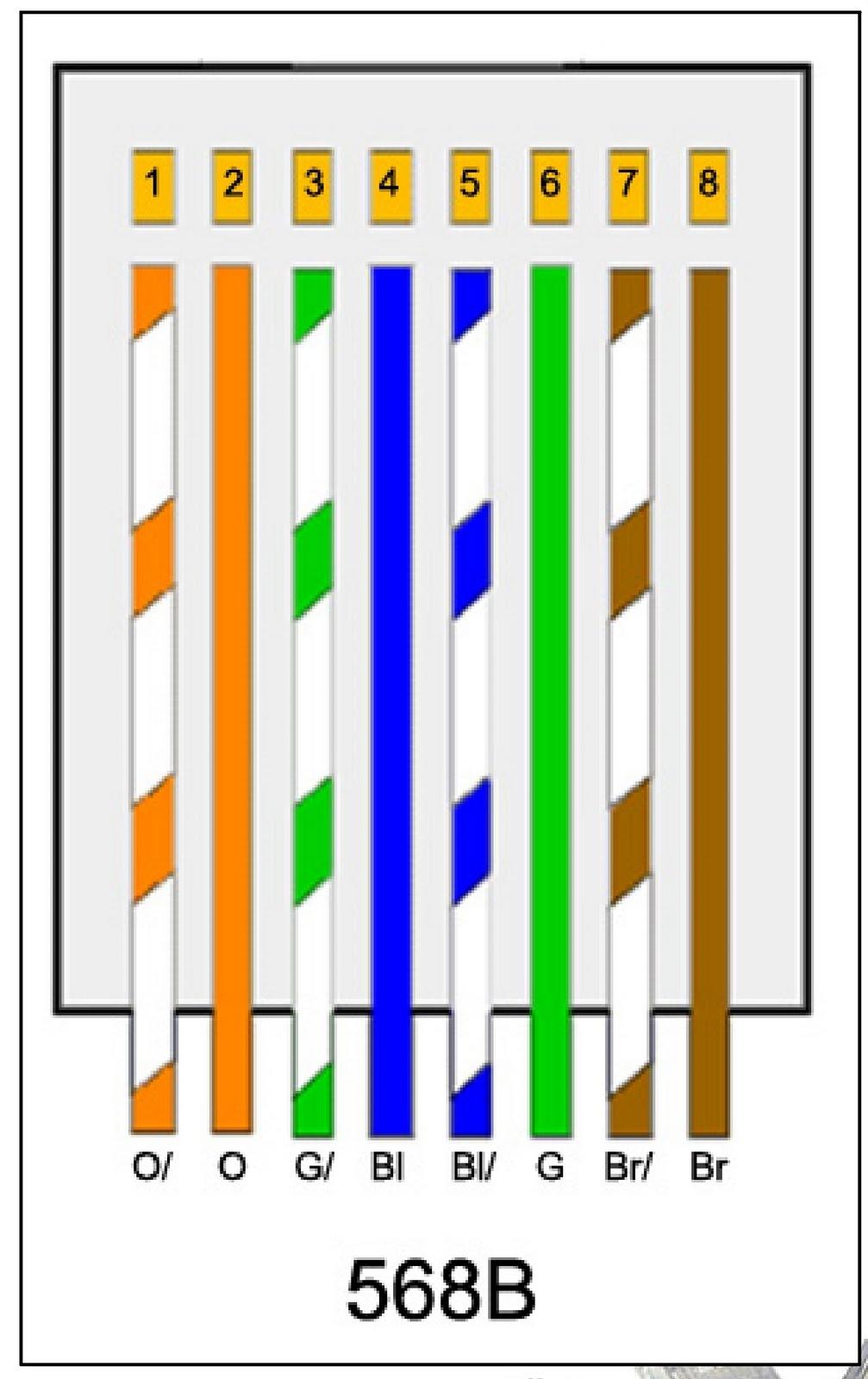 Cat6 Diagram : diagram, DIAGRAM], Cat6e, Ethernet, Cable, Wiring, Diagram, Version, Quality, MEDIAGRAMLTD.ANTEPRIMAMONTEPULCIANODABRUZZO.IT