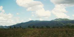 Honduran Hills