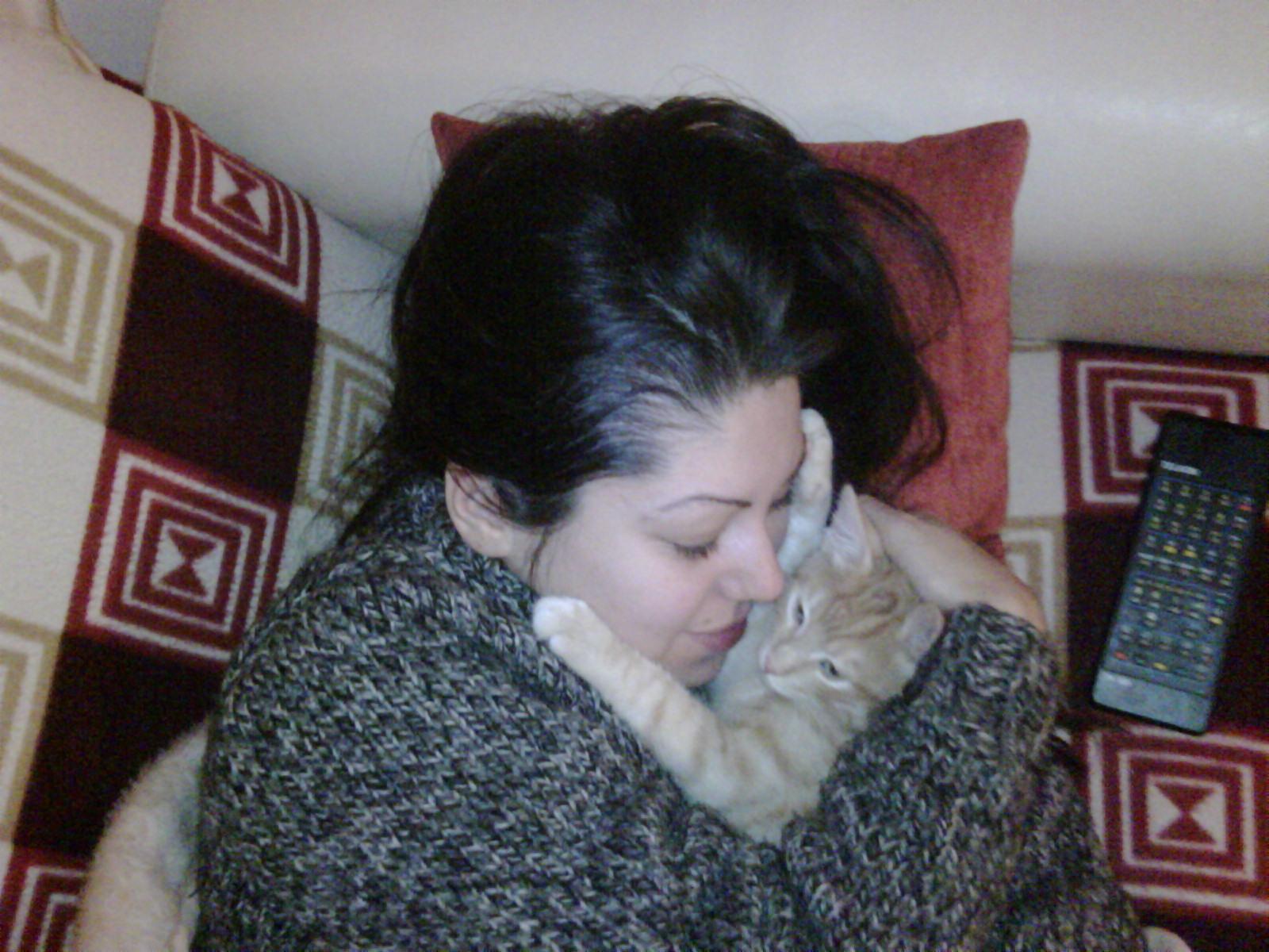 Kedi Tüyü Zararlı Mı