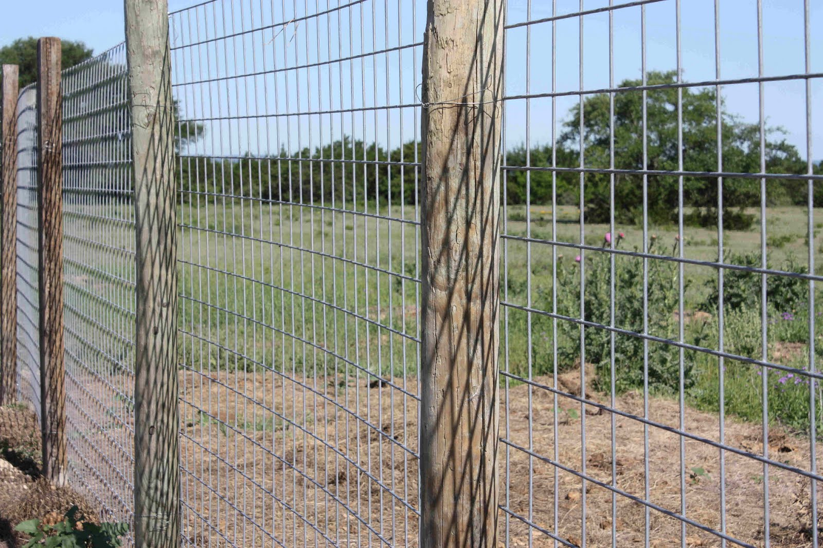 Musings From The Texas Hill Country: The Garden Fence