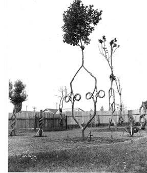 The Tree Circus